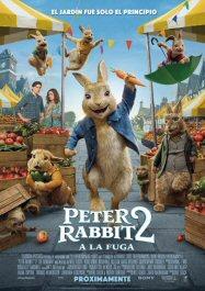 peter-rabbit2-poster-sinopsis