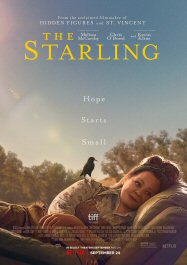 estornino-starling-poster-sinopsis