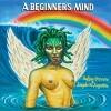 sufjan-stevens-angelo-augustine-beginners-mind