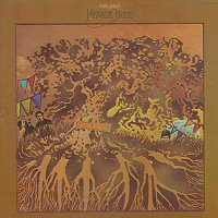 fever-tree-album-review-for-sale