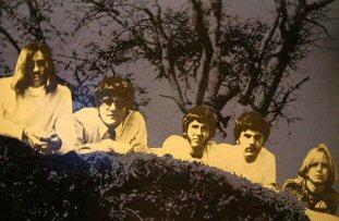 fever-tree-discos-critica-psicodelia-60s