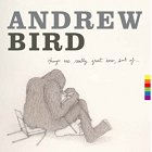 andrew Bird Things are really great here sort of album disco 2014 cover portada