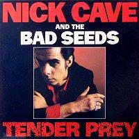 Nick Cave tender prey