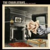 The Charlatans – Who We Touch: Avance