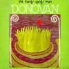 Donovan – Reedición (The Hurdy Gurdy Man – 1968): Versión