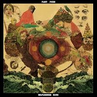 fleet foxes discos critica