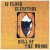 13Th Floor Elevators – Reedición (Bull Of The Woods – 1969): Versión