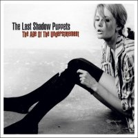 the last shadow puppets the age of the understatement cover