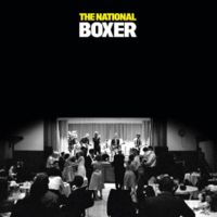 the national boxer disco album cover portada