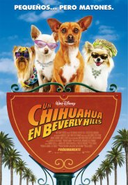 un chihuahua en beverly hills movie poster cartel pelicula