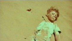 En Qué Película Un Niño Intenta Sobrevivir En El Desierto Alohacriticón