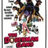 Cómo se llama la película donde entrenan a perros doberman para asaltar un banco