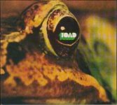 toad band rock discos albums