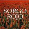 Mo Yan – Sorgo Rojo
